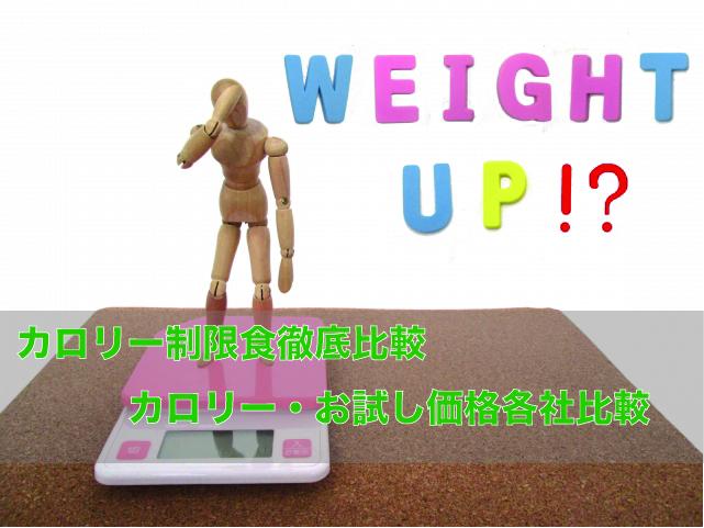 カロリー制限食